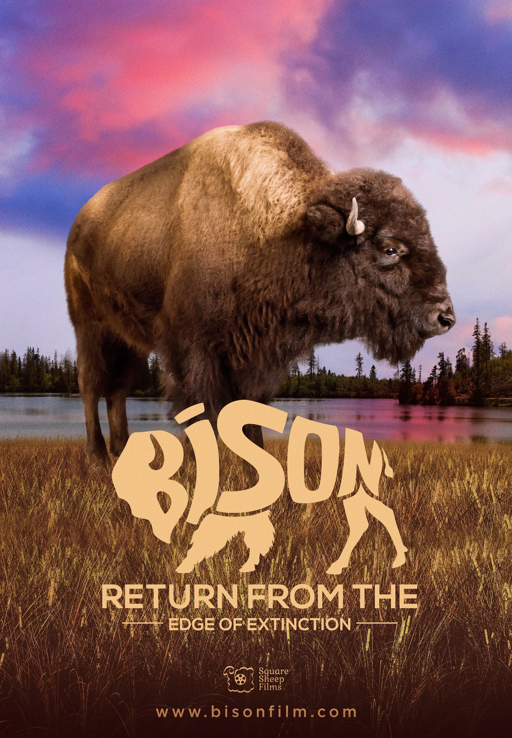 BisonReturn_27x39-B2-Final-Lores low